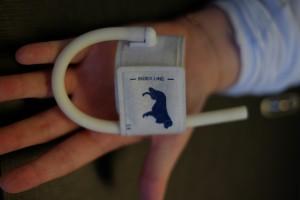 Blutdruckmanschette für Hunde